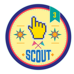 Scout Level 3